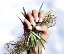 Aprende a cuidar tus uñas