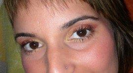Look en dorado y salmón con pigmentos NYX